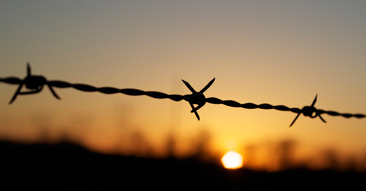 barbed-wire-sunset
